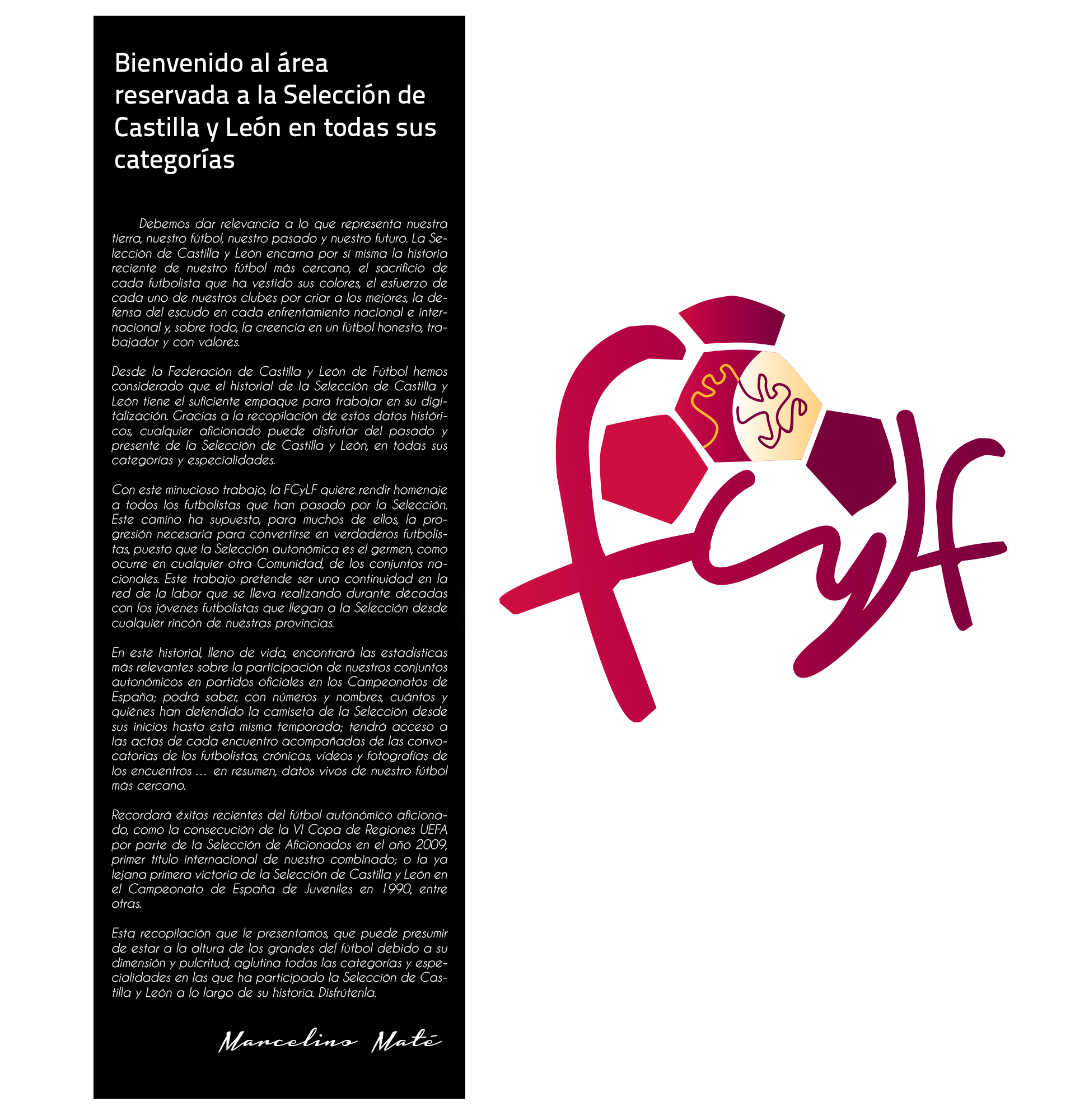 Competiciones de la Federacion de Castilla y Leon de Futbol 53f603db308bc